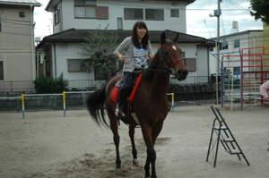 2010horse02